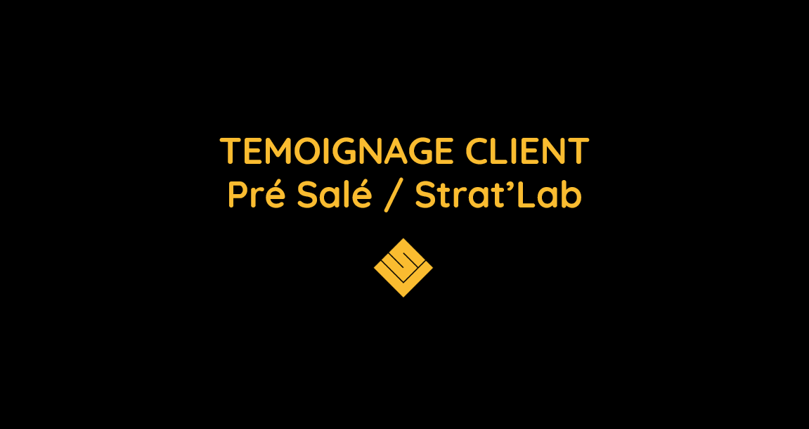 pre_sale_stratlab_skillvalue_mvp_factory_freelancing