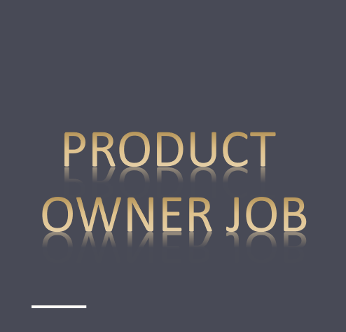Product Owner Job – Salesforce Application (SFDC) – Freelancing / Remote Project